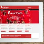 Cleaning Franchise website design