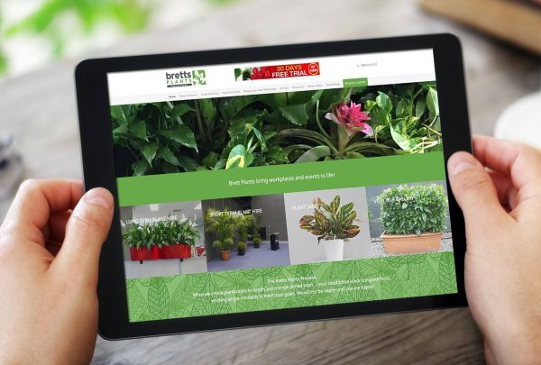 Nursery and Landscape Design website development