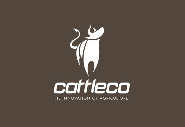 Cattle Co Agriculture Logo Design