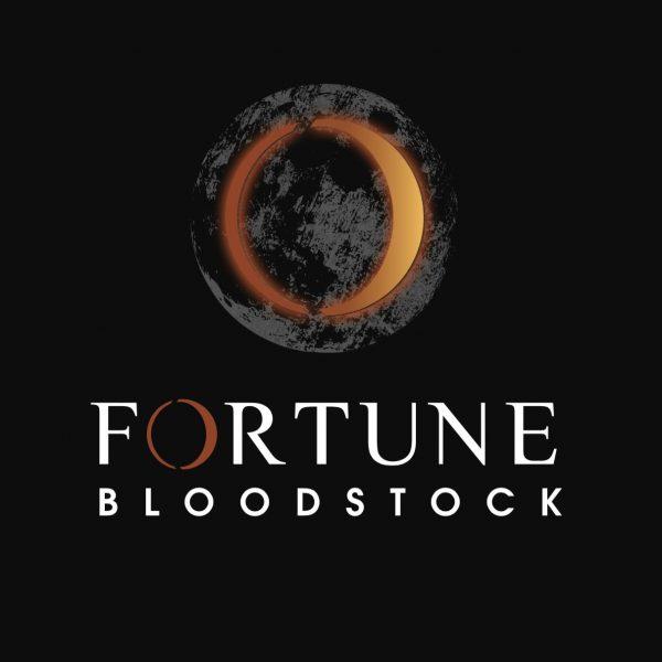 Thoroughbred Bloodstock Logo Design