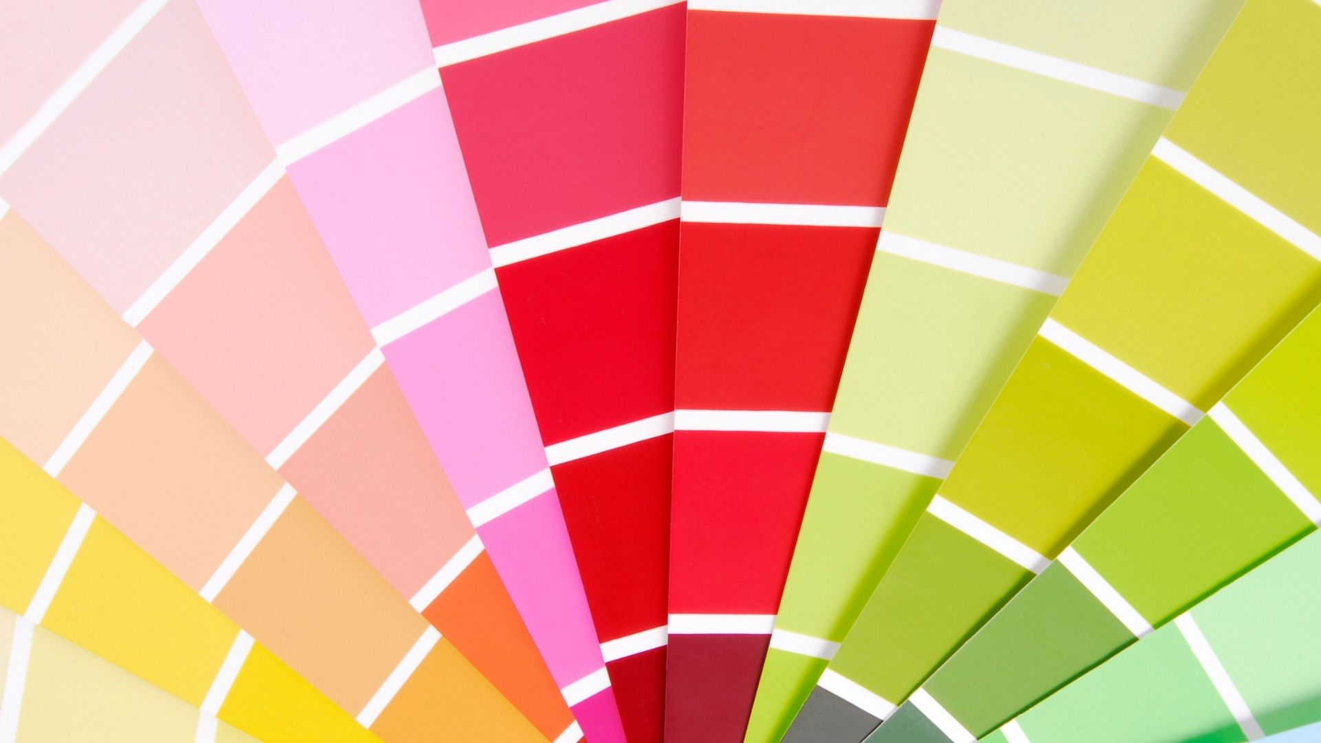 what are the best colours for your brand